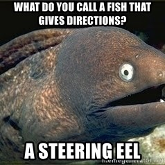 Bad Joke Eel v2.0 - What do you call a fish that gives directions? A Steering eel