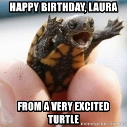 angry turtle - Happy birthday, Laura From a very excited turtle
