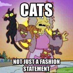 Crazy Cat Lady - cats not just a fashion statement
