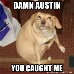 Oh You Dog - Damn Austin you caught me