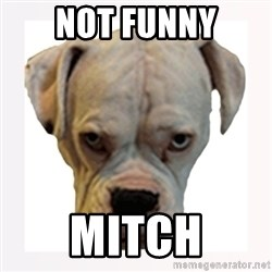 stahp guise - not funny mitch