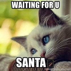 First World Problems Cat - Waiting for u Santa💜