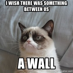Grumpy cat 5 - i wish there was something between us  a wall
