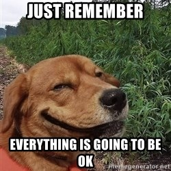 dogweedfarm - Just Remember Everything is going to be OK