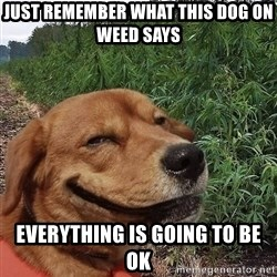 dogweedfarm - Just Remember what This Dog on Weed Says Everything is Going to be OK