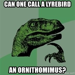 Raptor - Can one call a lyrebird an Ornithomimus?