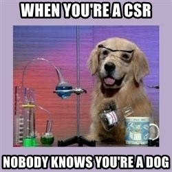 Dog Scientist - When you're a CSR Nobody knows you're a dog