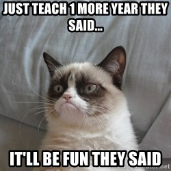 Grumpy cat 5 - Just teach 1 more year they said... it'll be fun they said