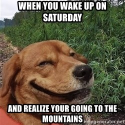 dogweedfarm - when you wake up on saturday  and realize your going to the mountains