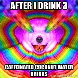 Final Advice Dog - After I drink 3 caffeinated coconut water drinks