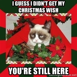 GRUMPY CAT ON CHRISTMAS - I guess i didn't get my christmas wish you're still here