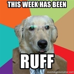 Business Dog - THIS WEEK HAS BEEN RUFF