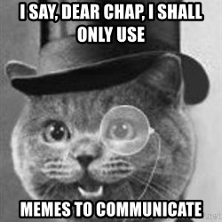 Monocle Cat - I say, dear chap, I shall only use  memes to communicate