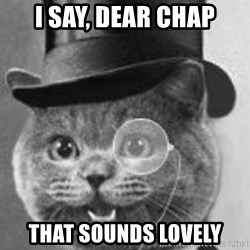 Monocle Cat - I say, dear chap That sounds lovely