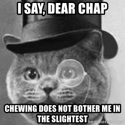 Monocle Cat - I say, dear chap Chewing does not bother me in the slightest