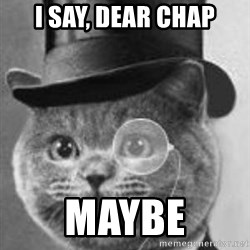 Monocle Cat - I say, dear chap Maybe
