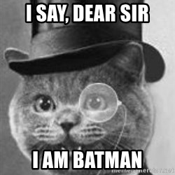 Monocle Cat - I say, dear sir I am Batman