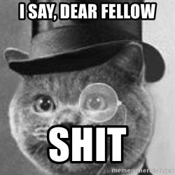 Monocle Cat - I say, Dear fellow Shit