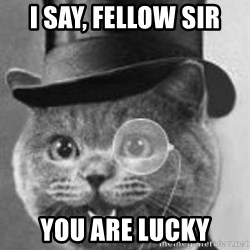 Monocle Cat - I say, fellow sir You are lucky