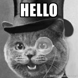 Monocle Cat - HEllo