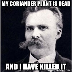 Nietzsche - My coriander plant is dead And I have killed it