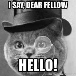 Monocle Cat - I say, Dear fellow Hello!
