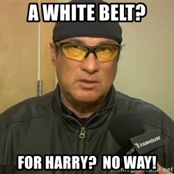 Steven Seagal Mma - a white belt? for harry?  no way!