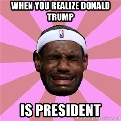 LeBron James - When You Realize donald Trump  is President