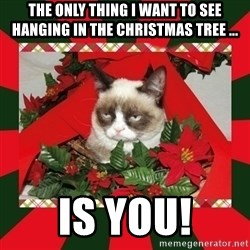 GRUMPY CAT ON CHRISTMAS - The only thing I want to see hanging in the christmas tree ... is you!