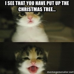 Adorable Kitten - i see that you have put up the christmas tree...