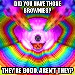 Final Advice Dog - Did you have those brownies? They're good, aren't they?