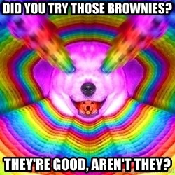 Final Advice Dog - Did you try those brownies? They're good, aren't they?