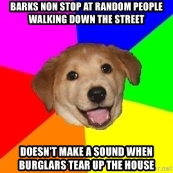 Advice Dog - Barks non stop at random people walking down the street doesn't make a sound when burglars tear up the house