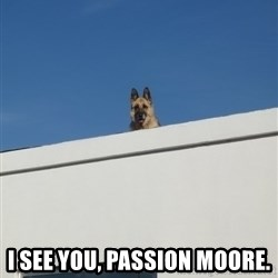 Roof Dog -  I see you, passion moore.