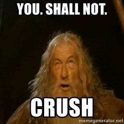 Gandalf You Shall Not Pass - You. Shall not.  Crush