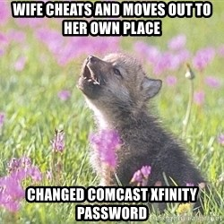 Baby Insanity Wolf - Wife cheats and moves out to her own place changed comcast xfinity password