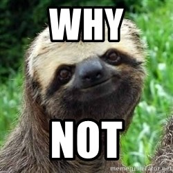Sarcastic Sloth - Why Not