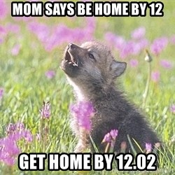 Baby Insanity Wolf - mom says be home by 12 get home by 12.02
