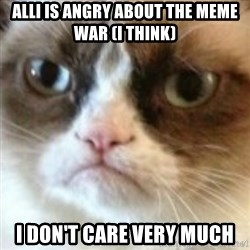 angry cat asshole - alli is angry about the meme war (i think) I don't care very much
