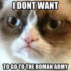 angry cat asshole - i dont want to go to the roman army