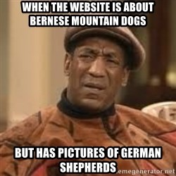 Confused Bill Cosby  - When the website is about Bernese Mountain Dogs But has pictures of German Shepherds