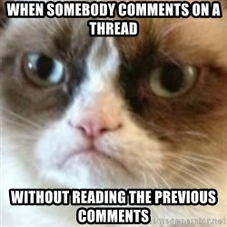 angry cat asshole - WHEN SOMEBODY COMMENTS ON A THREAD WITHOUT READING THE PREVIOUS COMMENTS