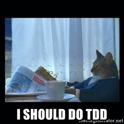 1% cat -  I SHOULD DO TDD