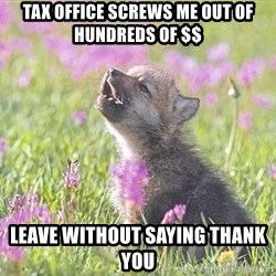 Baby Insanity Wolf - Tax office screws me out of hundreds of $$ Leave without saying thank you
