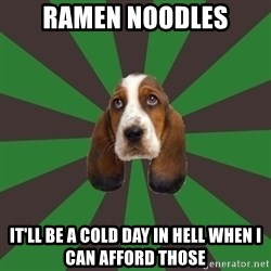 Broke College Student Basset - Ramen noodles it'll be a cold day in hell when I can afford those
