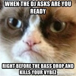 angry cat asshole - When the DJ asks are you ready  right before the bass drop and kills your vybez