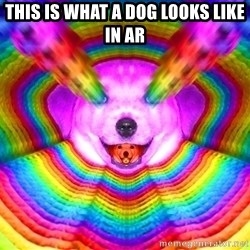 Final Advice Dog - This is what a dog looks like in ar