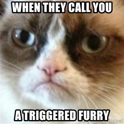 angry cat asshole - When they call you  a triggered furry