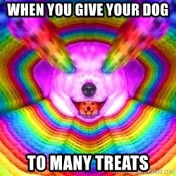 Final Advice Dog - When you Give your dog  To many Treats