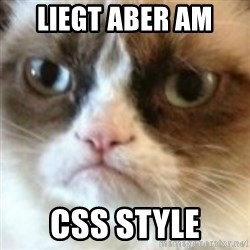 angry cat asshole - liegt aber am  CSS Style